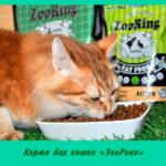 Корма для кошек «ЗооРинг»