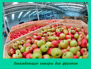 Охлаждающие камеры для фруктов
