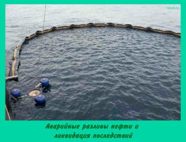 Аварийные разливы нефти и ликвидация последствий